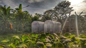 A Carmelite parish in the Philippines introduces urban farming